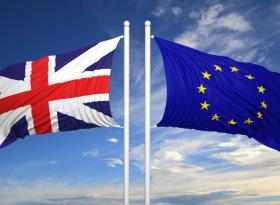 ING: референдум 10 июня