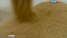 Цена российской пшеницы